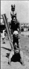 Luke, Buster Keaton, Al St. John and Fatty Arbuckle