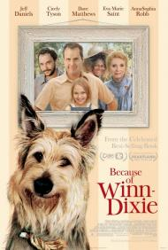 Because of Winn Dixie Movie Poster