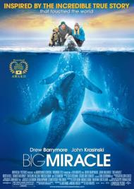 Big Miracle Movie Poster