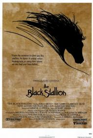 The Black Stallion Movie Poster