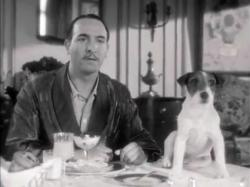 Jean Dujardin and Uggy in The Artist.