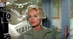 Tippi Hedren in Alfred Hitchcock's The Birds.