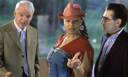 Steve Martin, Queen Latifah and Eugene Levy in Bringing Down the House.