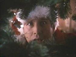 Chevy Chase in Christmas Vacation.