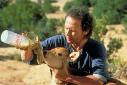 Billy Crystal in City Slickers.