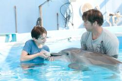 Nathan Gamble, Winter the dolphin and Harry Connick Jr. in Dolphin Tale.