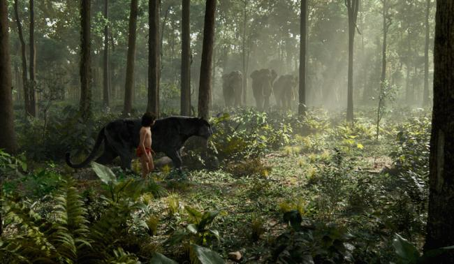 Neel Sethi in The Jungle Book.