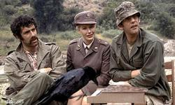 Elliott Gould, Sally Kellerman and Donald Sutherland in MASH.