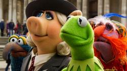 Gonzo, Miss Piggy, Kermit, and Floyd Pepper in Muppets Most Wanted.