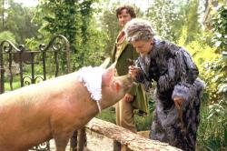 A pig, Colin Firth and Angela Lansbury in Nanny McPhee.