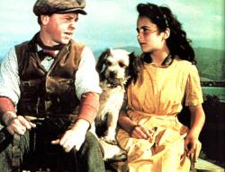 Mickey Rooney and Elizabeth Taylor in National Velvet.