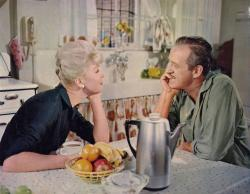 Doris Day and David Niven in Please Don't Eat the Daisies.