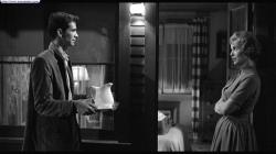 Anthony Perkins and Janet Leigh in Psycho.
