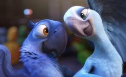 Jesse Eisenberg and Anne Hathaway voice the macaws in Rio.