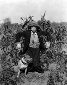 Buster Keaton is The Scarecrow.