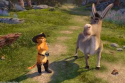 Puss and Donkey in Shrek 2.