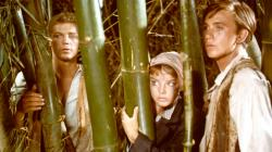James MacArthur, Janet Munro and Tommy Kirk in Swiss Family Robinson