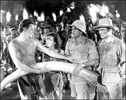 Johnny Weissmuller, Maureen O'Sullivan, Paul Cavanagh, Neil Hamilton and a large elephant tusk in Tarzan and His Mate.