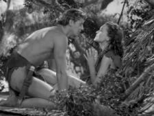 Tarzan and Jane.