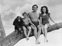 Cheetah, Johnny Sheffield, Johnny Weissmuller and Maureen O'Sullivan pose for a family portrait.