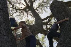 Childhood innocence as depicted in Terrence Malick's The Tree of Life.