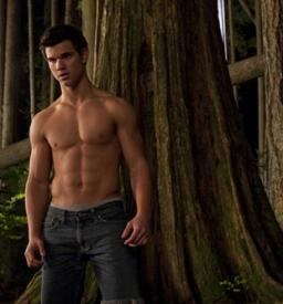 Taylor Lautner, showing the people what they came to see in Twilight: Eclipse.
