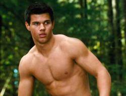 The only reason for watching this movie is a shirtless Taylor Lautner.