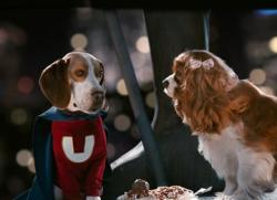 Jason Lee provides the voice of the super dog in Underdog.