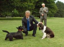 Bush spent time with his dogs, but not his daughters.