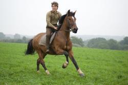 Jeremy Irvine, as Albert, rides Joey in War Horse.