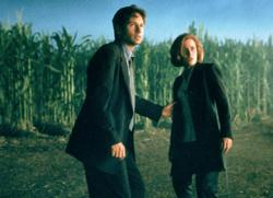 David Duchovny and Gillian Anderson in X-Files: Fight the Future.